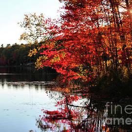 Sandra Huston - Buker Pond in Autumn