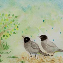 Tomer Rosen Grace - Bulbul Birds in the Rain