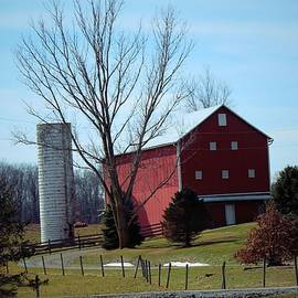 R A W M   - Bull Run Farm