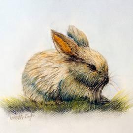 Loretta Luglio - Bunny