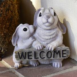 Linda Brody - Bunny Welcome