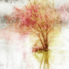 Terry Davis - Burst of Autumn Color in Winter