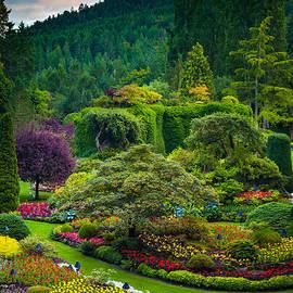 Butchart Gardens Sunset - Inge Johnsson