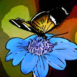 Bruce Nutting - Butterfly and Flower Watercolor