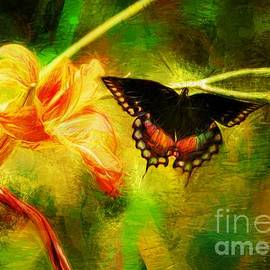 Tina  LeCour - Butterfly Fantasy