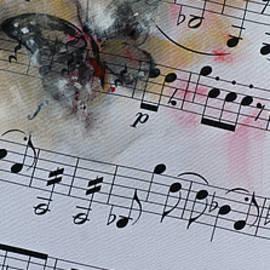 Butterfly Symphony - Dorina  Costras
