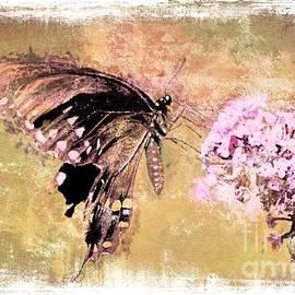 Tina LeCour - Butterfly Vintage Print
