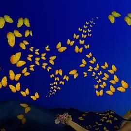 Nancy Pauling - Butterfly Watching