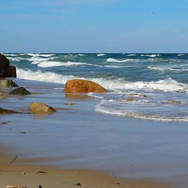 Dianne Cowen - By The Sea