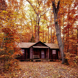 Jeff Tuten - Cabin in the woods