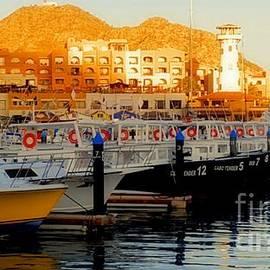 Luv Photography - Cabo San Lucas