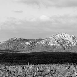 Brian Manfra - Cabo San Lucas Mountain