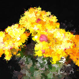 Bruce Nutting - Cactus Flowers