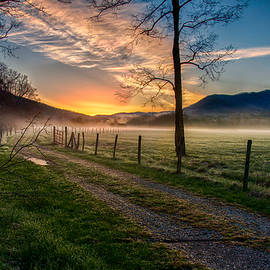 Gene Sherrill - Cades Cove Pathway to Beauty