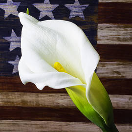 Cala Lily And American Flag - Garry Gay