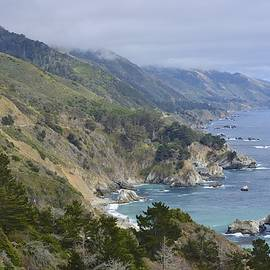 Shawn Dechant - Cali Coast