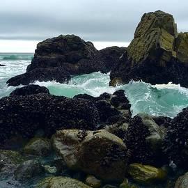 Anastasia Barre - California Coast