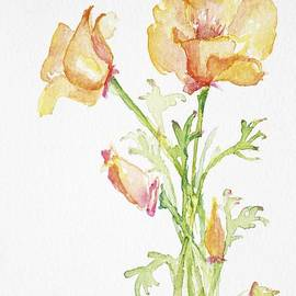 CheyAnne Sexton - California Poppy Bunch watercolor