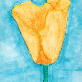 Eric Forster - California Poppy