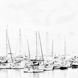 Marcia Lee Jones - Camden Harbor Maine