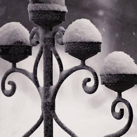 Susan Maxwell Schmidt - Candelabra in the Snow
