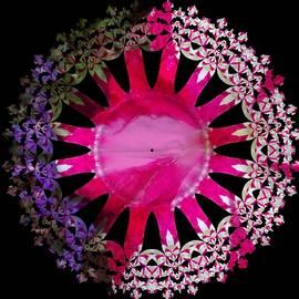 Nancy Pauling - Candy Petunia 2