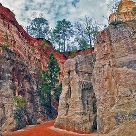 Dennis Baswell - Canyon walk