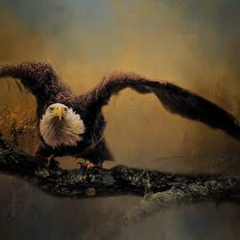 Jai Johnson - Capacity Unleashed Bald Eagle Art