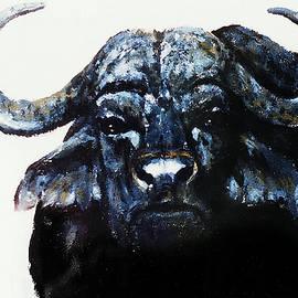 Hartmut Jager - Cape Buffalo