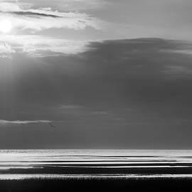 Bill Wakeley - Cape Cod First Encounter Beach BW