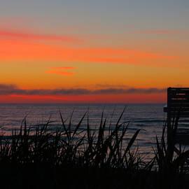 Dianne Cowen - Cape Cod Morning