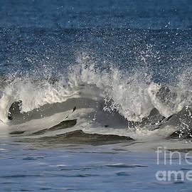 Sandra Huston - Capturing a Wave