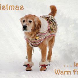 Bonnie Follett - Card Christmas is a warm friend