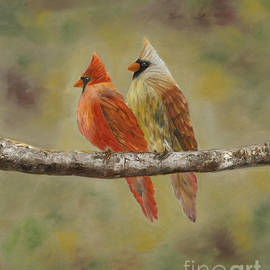 Theresa Divin - Cardinals