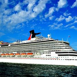 Srinivasan Venkatarajan - Carnival Magic at Key West