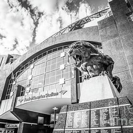 Carolina Panthers Stadium Black and White Photo - Paul Velgos