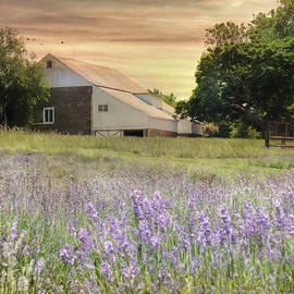 Lori Deiter - Carousel Lavender Farm