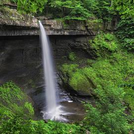 Mark Papke - Carpenter Falls 2