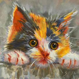Ahmed Bayomi - Cat