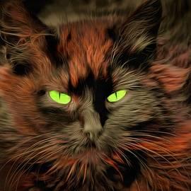 Sergey Lukashin - Cat Beelzebub