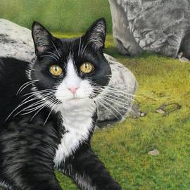 Sarah Batalka - Cat In A Rock Garden