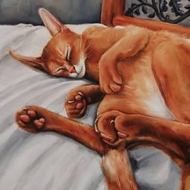 Jean Cormier - Cat Nap