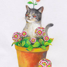 Jiang Betty - Cat plant