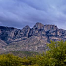 Mark Myhaver - Catalina Mountains P1