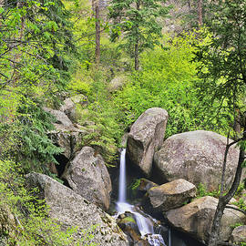 Bijan Pirnia - Catamount Tucked Away In The Canyon