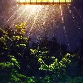 Julian Darcy - Caught in the rain