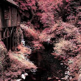 Athena Mckinzie - Cedar Creek Grist Mill Soft Burgundy