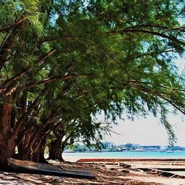 Marcus Dagan - Cedars In Cayman