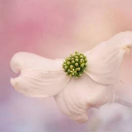 Kim Hojnacki - Celebration of Spring