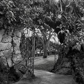 John Schneider - Celestial Gate